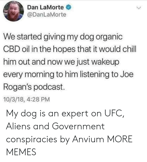 Chill, Dank, and Memes: Dan LaMorte  @DanLaMorte  We started giving my dog organic  CBD oil in the hopes that it would chill  him out and now we just wakeup  every morning to him listening to Joe  Rogan's podcast.  10/3/18, 4:28 PM My dog is an expert on UFC, Aliens and Government conspiracies by Anvium MORE MEMES