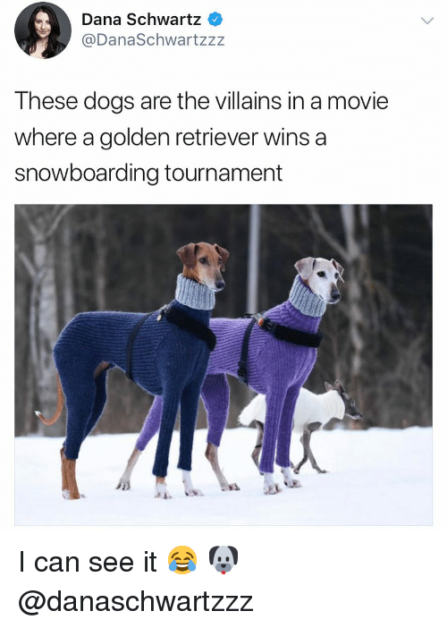 Schwartz: Dana Schwartz  @DanaSchwartzzz  These dogs are the villains in a movie  where a golden retriever wins a  snowboarding tournament  斗 I can see it 😂 🐶 @danaschwartzzz
