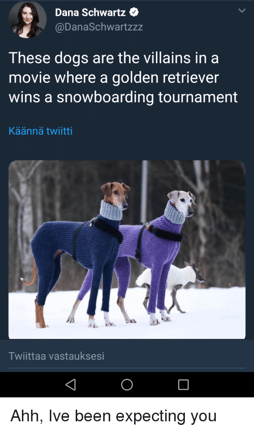 Schwartz: Dana Schwartz e  @DanaSchwartzzz  These dogs are the villains in a  movie where a golden retriever  wins a snowboarding tournament  Käännä twiitti  Twiittaa vastauksesi Ahh, Ive been expecting you