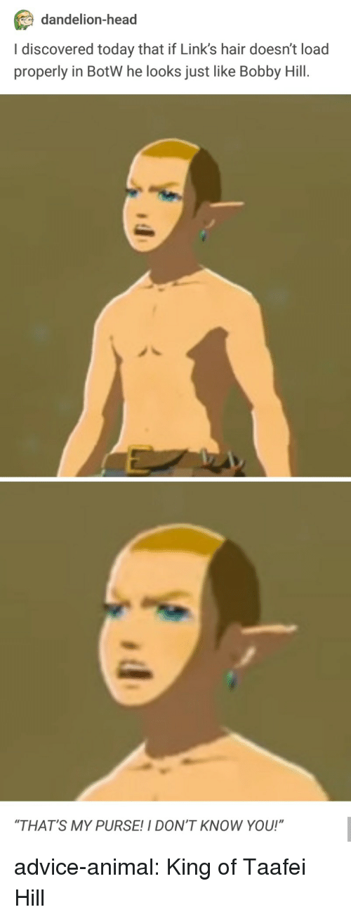 """Bobby Hill: dandelion-head  I discovered today that if Link's hair doesn't load  properly in BotW he looks just like Bobby Hill.  """"THAT'S MY PURSE!I DON'T KNOW YOU!"""" advice-animal:  King of Taafei Hill"""