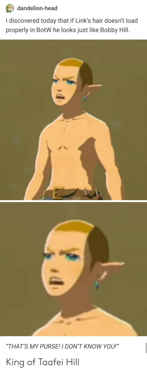 "Head, Bobby Hill, and Hair: dandelion-head  I discovered today that if Link's hair doesn't load  properly in BotW he looks just like Bobby Hill.  ""THAT'S MY PURSE!I DON'T KNOW YOU!"" King of Taafei Hill"