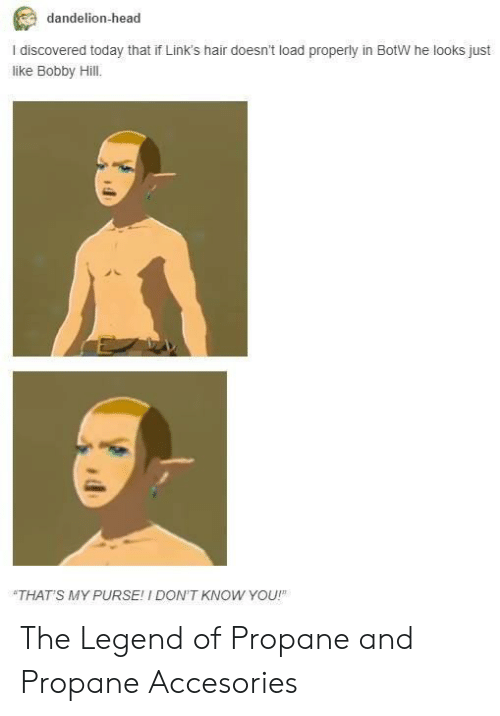 Bobby Hill: dandelion-head  I discovered today that if Link's hair doesn't load properly in BotW he looks just  like Bobby Hill.  THAT'S MY PURSE! I DON'T KNOW YOU! The Legend of Propane and Propane Accesories