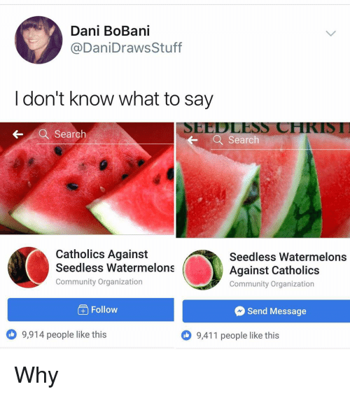 Calvin Johnson, Community, and Memes: Dani BoBani  @DaniDraws Stuff  I don't know what to say  SEEDLESS CHKIST  ← a Search  ← a search  Catholics Against  Seedless Watermelons  Community Organization  Seedless Watermelons  Against Catholics  Community Organization  Follow  Send Message  9,914 people like this  9,411 people like this Why