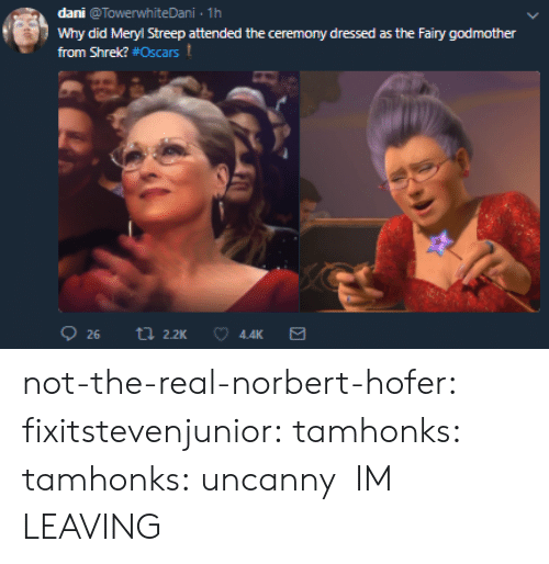 Oscars: dani @TowerwhiteDani 1h  Why did Meryl Streep attended the ceremony dressed as the Fairy godmother  from Shrek? #Oscars t  4.4K not-the-real-norbert-hofer:  fixitstevenjunior:  tamhonks:  tamhonks: uncanny    IM LEAVING