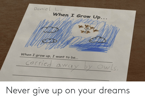 daniel: Daniel L  When I Grow Up...  When I grow up, I want to be...  Carricd away by OwLs Never give up on your dreams