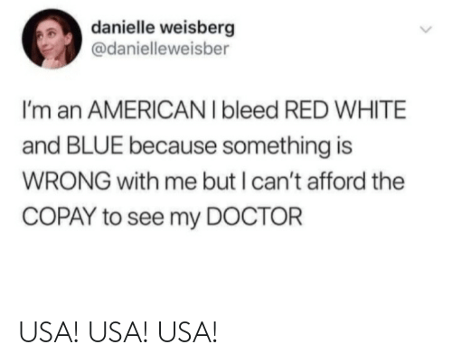i cant: danielle weisberg  @danielleweisber  I'm an AMERICAN I bleed RED WHITE  and BLUE because something is  WRONG with me but I can't afford the  COPAY to see my DOCTOR USA! USA! USA!