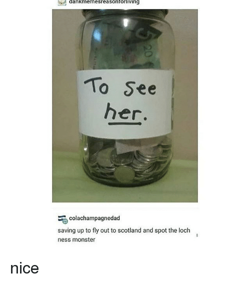 Loch Ness Monster, Memes, and Monster: dankmemesreasonforliving  To See  her.  colachampagnedad  saving up to fly out to scotland and spot the loch  ness monster nice