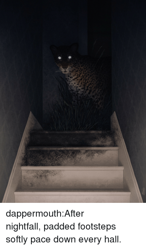 Target, Tumblr, and Blog: dappermouth:After nightfall,padded footsteps softly pace down every hall.