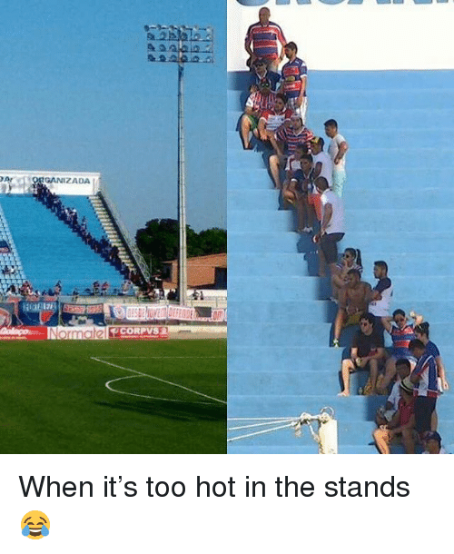 Memes, 🤖, and The Stand: DAr  GANIZADA  Norma  ORPV When it's too hot in the stands 😂