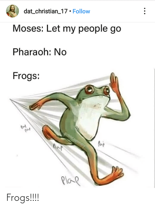 let my people go: dat_christian_17 • Follow  Moses: Let my people go  Pharaoh: No  Frogs:  @christ.memelstry  flap  Plae Frogs!!!!