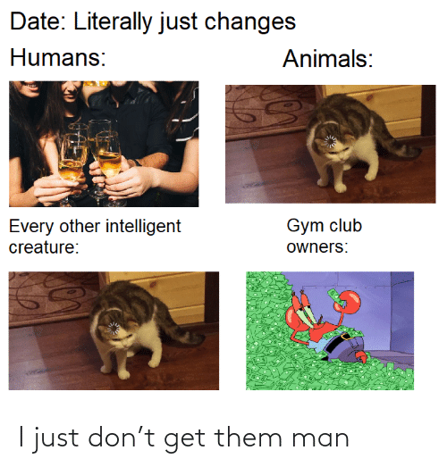 Gym: Date: Literally just changes  Humans:  Animals:  Gym club  Every other intelligent  creature:  owners: I just don't get them man