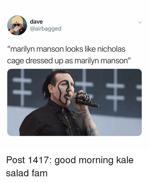 "Fam, Marilyn Manson, and Memes: dave  @airbagged  ""marilyn manson looks like nicholas  cage dressed up as marilyn manson"" Post 1417: good morning kale salad fam"