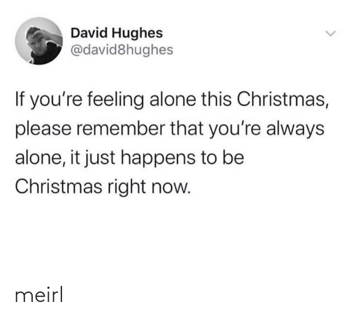 remember: David Hughes  @david8hughes  If you're feeling alone this Christmas,  please remember that you're always  alone, it just happens to be  Christmas right now. meirl