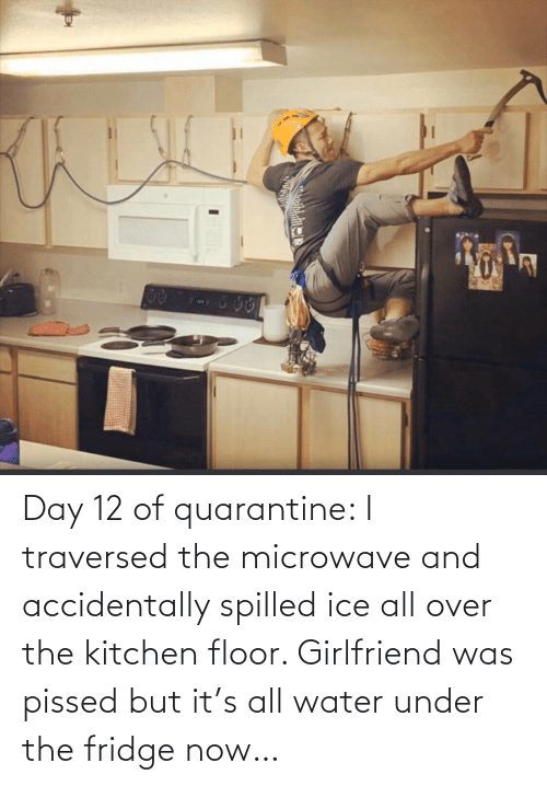 all: Day 12 of quarantine: I traversed the microwave and accidentally spilled ice all over the kitchen floor. Girlfriend was pissed but it's all water under the fridge now…