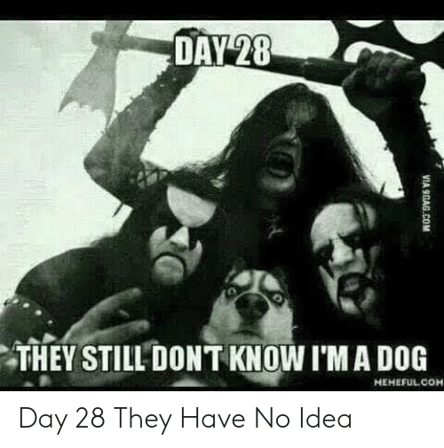 9gag, Idea, and Dog: DAY 28  THEY STILL DONT KNOW I'M A DOG  HEMEFUL COM  VIA 9GAG.COM Day 28 They Have No Idea