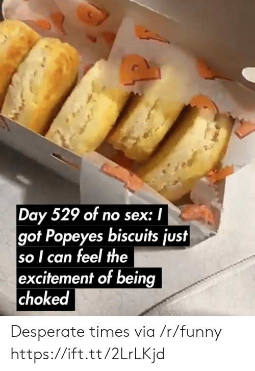 Desperate, Funny, and Popeyes: Day 529 of no sex: I  got Popeyes biscuits just  so I can feel the  excitement of being  choked Desperate times via /r/funny https://ift.tt/2LrLKjd