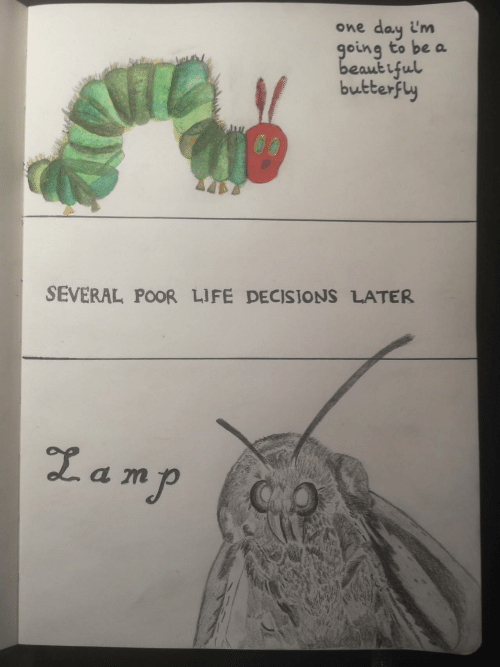 Life, Butterfly, and Decisions: day i'm  going to be a  beaut iful  butterfly  One  SEVERAL POOR LIFE DECISIONS LATER  Lamp  QO
