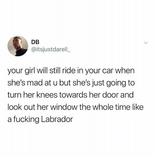 Fucking, Relationships, and Girl: DB  @itsjustdarell  your girl will still ride in your car when  she's mad at u but she's just going to  turn her knees towards her door and  look out her window the whole time like  a fucking Labrador