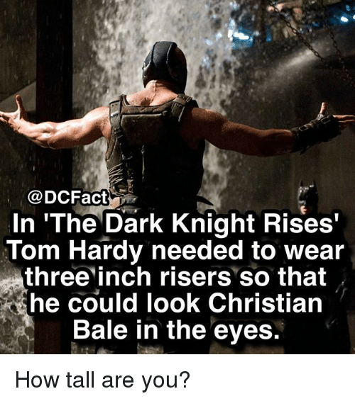 Memes, Tom Hardy, and Christian Bale: @DCFact  In 'The Dark Knight Rises  Tom Hardy needed to wear  three inch risers so that  he could look Christian  Bale in the eves. How tall are you?