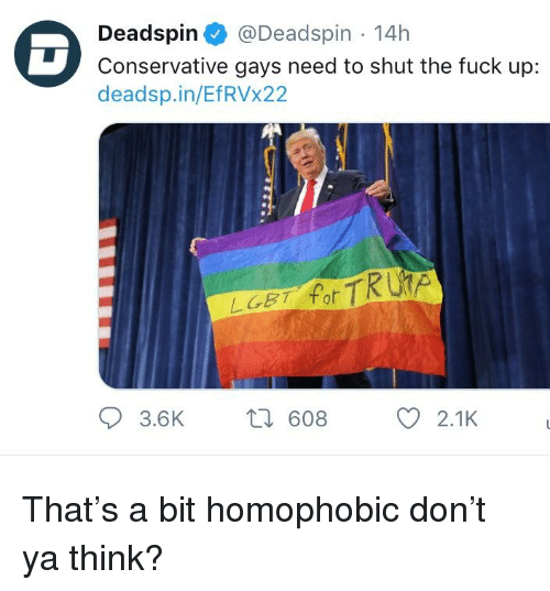 Lgbt, Fuck, and Shut the Fuck Up: Deadspin@Deadspin 14h  Conservative gays need to shut the fuck up:  deadsp.in/EfRVx22  LGBT fot  3.6K  608  2.1K
