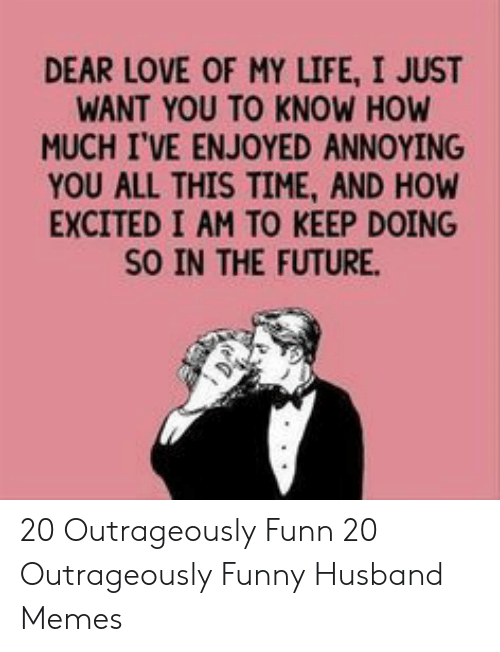Funny Husband Memes: DEAR LOVE OF MY LIFE, I JUST  WANT YOU TO KNOW HOW  MUCH I'VE ENJOYED ANNOYING  YOU ALL THIS TIME, AND HOW  EXCITED I AM TO KEEP DOING  SO IN THE FUTURE. 20 Outrageously Funn  20 Outrageously Funny Husband Memes
