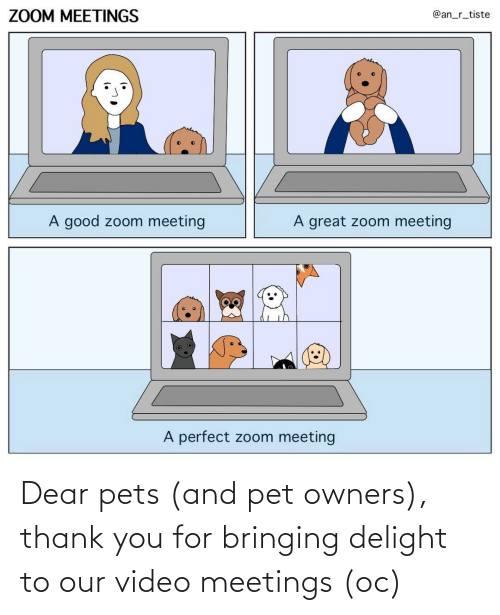 Pets: Dear pets (and pet owners), thank you for bringing delight to our video meetings (oc)