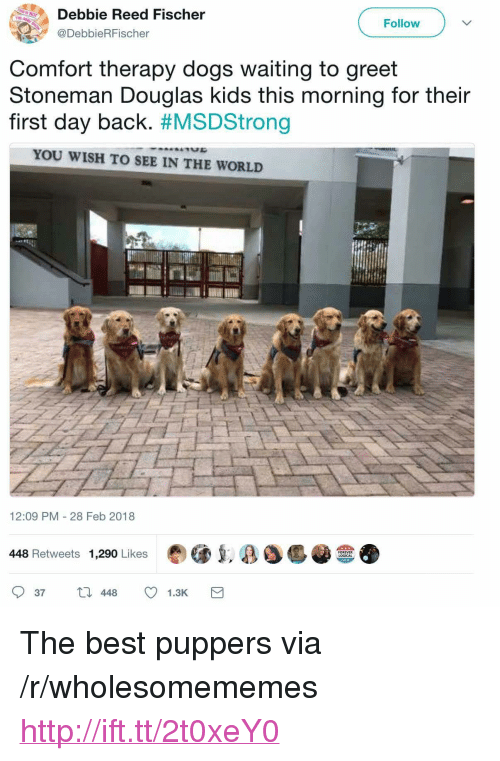 """Dogs, Best, and Forever: Debbie Reed Fischer  @DebbieRFischer  THE  Follow  Comfort therapy dogs waiting to greet  Stoneman Douglas kids this morning for their  first day back. #MSDStrong  YOU WISH TO SEE IN THE WORLD  12:09 PM - 28 Feb 2018  448 Retweets 1,290 Likes  FOREVER  LOGICAL  37448 1.3K <p>The best puppers via /r/wholesomememes <a href=""""http://ift.tt/2t0xeY0"""">http://ift.tt/2t0xeY0</a></p>"""