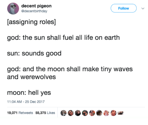 Good God: decent pigeon  @decentbirthday  Follow  [assigning roles]  god: the sun shall fuel all life on earth  sun: sounds good  god: and the moon shall make tiny waves  and werewolves  moon: hell yes  1:04 AM-25 Dec 2017  19,071 Retweets 55,375 Likes  ●GGO. ●むSie