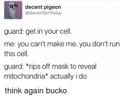 Memes, Run, and Mitochondria: decent pigeon  @decentbirthday  guard: get in your cell  me: you can't make me. you don't run  this cell.  guard: *rips off mask to reveal  mitochondria* actually i do think again bucko