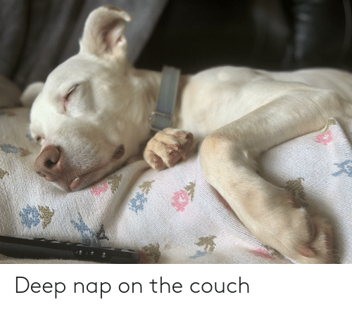 Couch: Deep nap on the couch