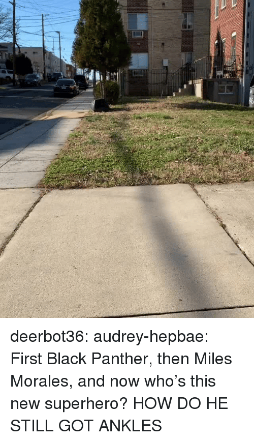Miles Morales: deerbot36:  audrey-hepbae: First Black Panther, then Miles Morales, and now who's this new superhero?  HOW DO HE STILL GOT ANKLES
