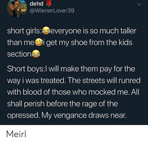the rage: dehd  @WienerLover39  short girls:everyone is so much taller  than mei get my shoe from the kids  section  Short boys:l will make them pay for the  way i was treated. The streets will runred  with blood of those who mocked me. All  shall perish before the rage of the  opressed. My vengance draws near. Meirl