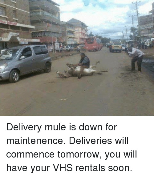 Blockbuster Uganda: Delivery mule is down for maintenence.  Deliveries will commence tomorrow, you will have your VHS rentals soon.