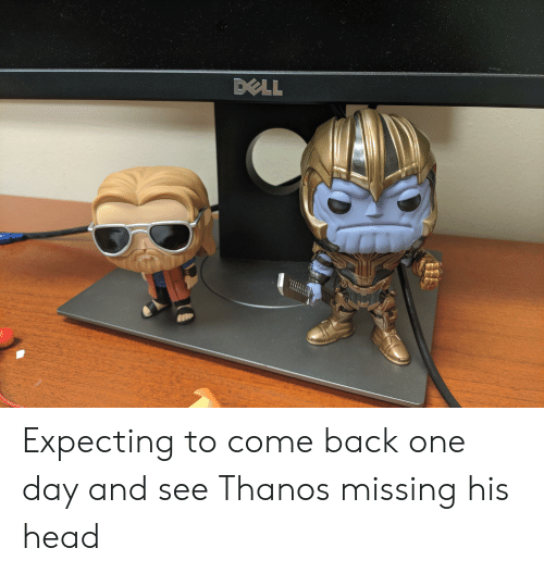 Dell, Head, and Thanos: DELL Expecting to come back one day and see Thanos missing his head