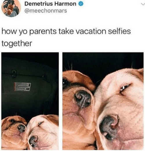 Parents, Yo, and Vacation: Demetrius Harmon  @meechonmars  how yo parents take vacation selfies  together