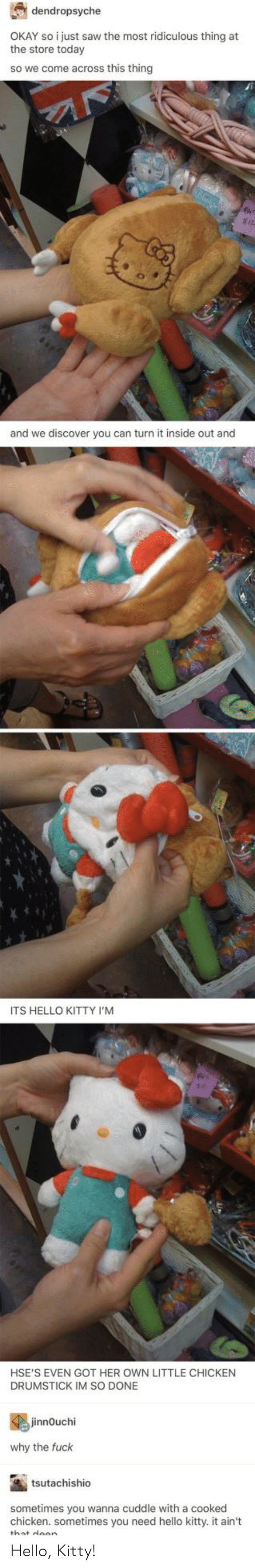 Im So Done: dendropsyche  OKAY so i just saw the most ridiculous thing at  the store today  so we come across this thingg  and we discover you can turn it inside out and  ITS HELLO KITTY I'M  HSE'S EVEN GOT HER OWN LITTLE CHICKEN  DRUMSTICK IM SO DONE  jinnOuchi  why the fuck  tsutachishio  sometimes you wanna cuddle with a cooked  chicken. sometimes you need hello kitty. it ain't  wllo kittyit an Hello, Kitty!