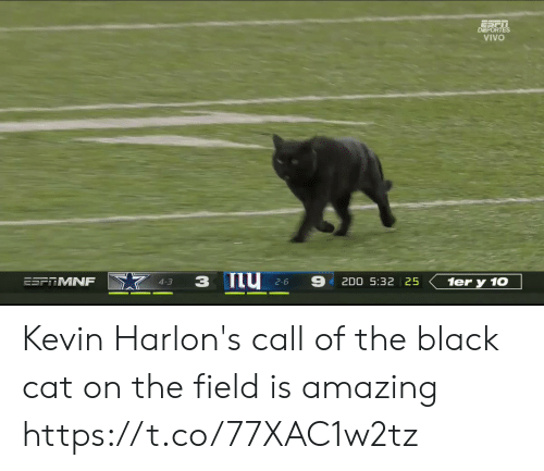 Football, Nfl, and Sports: DEPORTES  VIVO  ESFRMNF  2D0 5:32 25  1er y 10  4-3  2-6 Kevin Harlon's call of the black cat on the field is amazing https://t.co/77XAC1w2tz