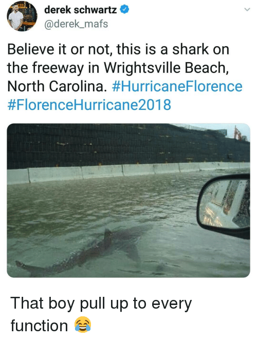 Memes, Shark, and Beach: derek schwartz  @derek_mafs  Believe it or not, this is a shark on  the freeway in Wrightsville Beach,  North Carolina. That boy pull up to every function 😂