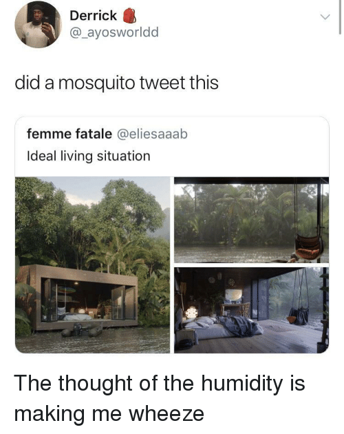 Living, Thought, and Mosquito: Derrick  @_ayosworldd  did a mosquito tweet this  femme fatale @eliesaaab  Ideal living situation The thought of the humidity is making me wheeze