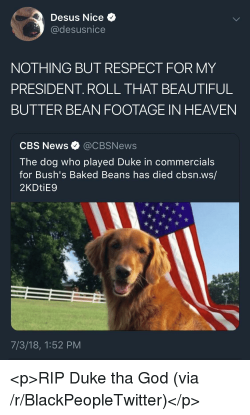 Baked, Beautiful, and Blackpeopletwitter: Desus Nice  @desusnice  NOTHING BUT RESPECT FOR MY  PRESIDENT. ROLL THAT BEAUTIFUL  BUTTER BEAN FOOTAGE IN HEAVEN  CBS News @CBSNews  The dog who played Duke in commercials  for Bush's Baked Beans has died cbsn.ws/  2KDtiE9  7/3/18, 1:52 PM <p>RIP Duke tha God (via /r/BlackPeopleTwitter)</p>