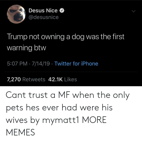 iPhone 7: Desus Nice  @desusnice  Trump not owning a dog was the first  warning btw  5:07 PM 7/14/19 Twitter for iPhone  7,270 Retweets 42.1K Likes Cant trust a MF when the only pets hes ever had were his wives by mymatt1 MORE MEMES