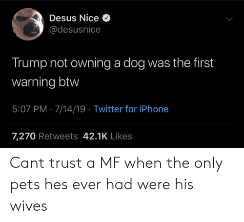 iPhone 7: Desus Nice  @desusnice  Trump not owning a dog was the first  warning btw  5:07 PM 7/14/19 Twitter for iPhone  7,270 Retweets 42.1K Likes Cant trust a MF when the only pets hes ever had were his wives