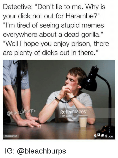 "Stupid Memes: Detective: ""Don't lie to me. Why is  your dick not out for Harambe?""  ""I'm tired of seeing stupid memes  everywhere about a dead gorilla.""  ""Well I hope you enjoy prison, there  are plenty of dicks out in there.""  chburps  gettyimages  Rich Legg  s UR F.co  169969051 IG: @bleachburps"