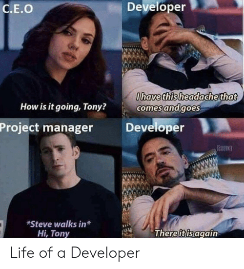 project manager: Developer  C.E.O  havethisheadache that  How is it going, Tony?  comesandgoes  Project manager Developer  *Steve walks in*  Hi, Tony  Thereiisagain Life of a Developer