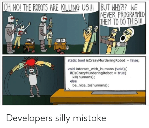 Developers: Developers silly mistake