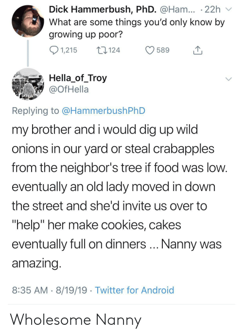 """troy: Dick Hammerbush, PhD. @Ham... .22h  What are some things you'd only know by  growing up poor?  1,215  124  589  Hella_of_Troy  @OfHella  Replying to @HammerbushPhD  my brother and i would dig up wild  onions in our yard or steal crabapples  from the neighbor's tree if food was low.  eventually an old lady moved in down  the street and she'd invite us over to  """"help"""" her make cookies, cakes  Nanny was  eventually full on dinners  amazing.  8:35 AM 8/19/19 Twitter for Android Wholesome Nanny"""