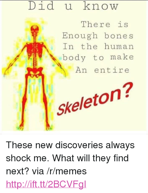 """Bones, Memes, and Http: Did u know  There is  Enough bones  In the human  body to make  An entire  Skeleton? <p>These new discoveries always shock me. What will they find next? via /r/memes <a href=""""http://ift.tt/2BCVFgI"""">http://ift.tt/2BCVFgI</a></p>"""