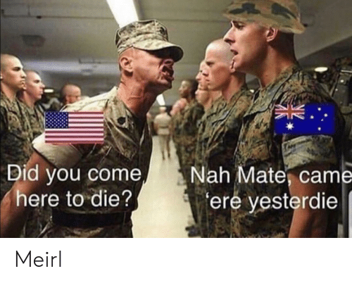 come here: Did you come  here to die?  Nah Mate, came  ere yesterdie Meirl