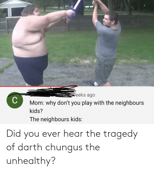 Chungus: Did you ever hear the tragedy of darth chungus the unhealthy?