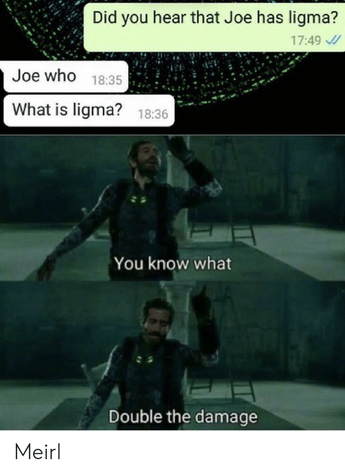 What Is, MeIRL, and Who: Did you hear that Joe has ligma?  17:49  Joe who 18:35  What is ligma?  18:36  You know what  Double the damage Meirl